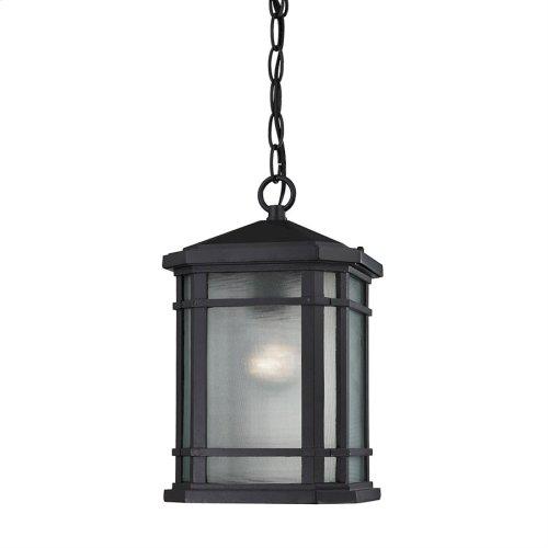 Lowell 1-Light Outdoor Hanging Lantern in Matte Black