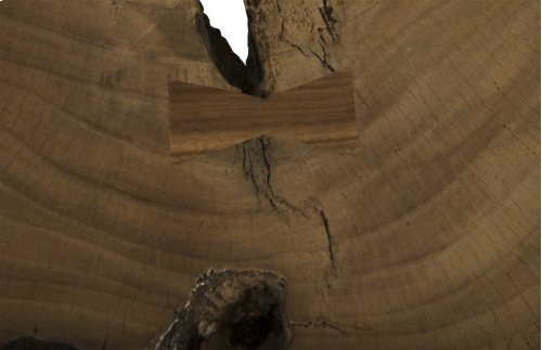Chamcha Wood Freeform Coffee Table, Wood Legs, Round