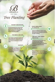 Bramble_Poster_SustainabilityPractices_24x36in_FINAL