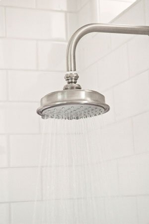 Uncoated-Polished-Brass-Living Single Function Shower Head Product Image