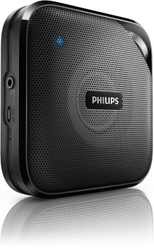 wireless portable speaker