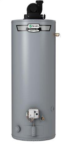 ProLine XE Power Vent 40-Gallon Gas Water Heater
