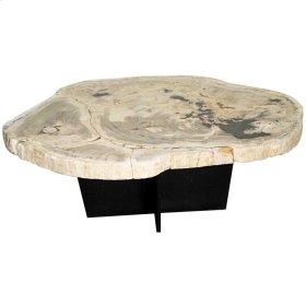 Venus Petrified Coffee Table, Natural