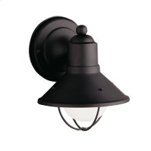 Seaside Collection 1 Light Seaside Outdoor Wall Light BK