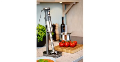 Electrolux Masterpiece Immersion Blender