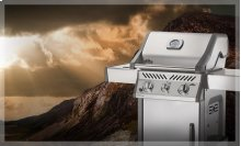 Rogue® 365 with Infrared Side Burner in Stainless Steel