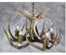 5 Light Mule Deer Chandelier Product Image