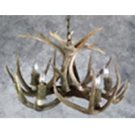 5 Light Mule Deer Chandelier Product Image