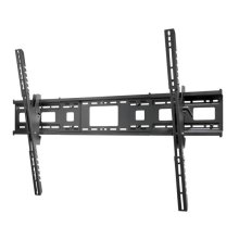 Fixed or Tilting Wall Mount