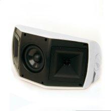 AW-500-SM Outdoor Speaker