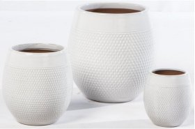 Magnolia Planter - Set of 3