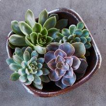 Antique Copper Monterey Bowl