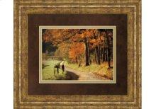 DM5441  Autumns Morning Light By D. Burt