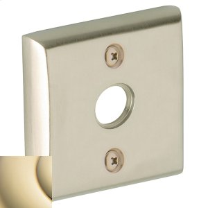Lifetime Polished Brass 0422 Emergency Release Trim Product Image