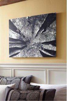 Timber and Tanning Wall Art