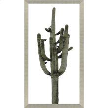 Saguaro II