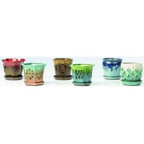 """4"""" Orchid Pots with Attached Saucer - Set of 6"""
