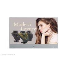 Transparent OLED Digital Signage