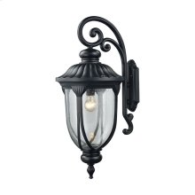 Derry Hill 1-Light Outdoor Wall Lamp in Matte Black