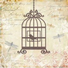 Caged Whimsy II