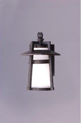 Calistoga 1-Light Outdoor Wall Lantern