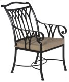 Dining Arm Chair Product Image