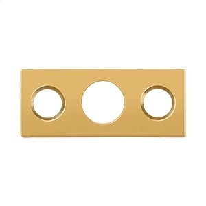 "Strike Plate For 7"" Flush Bolt - PVD Polished Brass"
