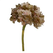 Hydrangea,Sage