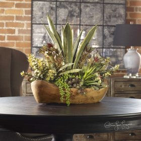 Salar, Succulents