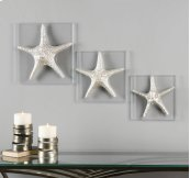 Silver Starfish, S/3