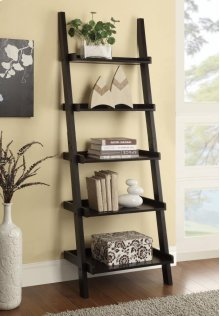 Ladder Bookcase