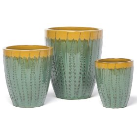 Aloe Desert Planter - Set of 3