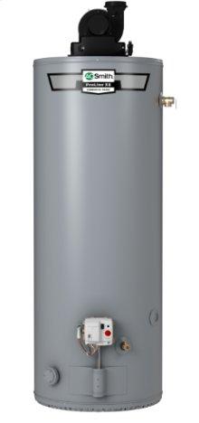 ProLine® XE Power Vent 40-Gallon Propane Water Heater