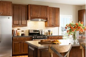 """20-1/2"""" Stainless Steel Built-In Hood with Internal Blower"""