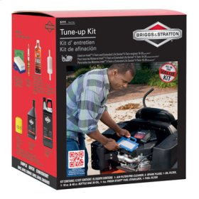 Intek Tune-Up Kit (5111WEB)