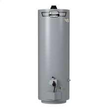 ProLine Mobile Home Direct Vent 40-Gallon Gas Water Heater Series 400
