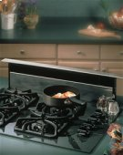 "36"" Stainless Steel 500 CFM Downdraft with Stainless Steel cover Product Image"