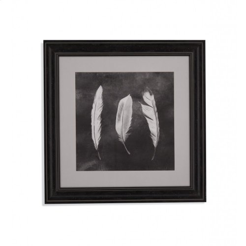 Cyanotype Feathers II