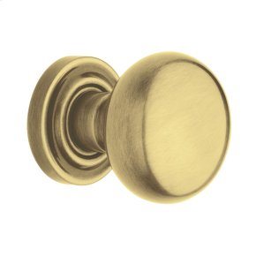 Satin Brass and Brown 5000 Estate Knob