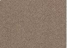 1079/3067 Cascade/Walnut Carpet Product Image