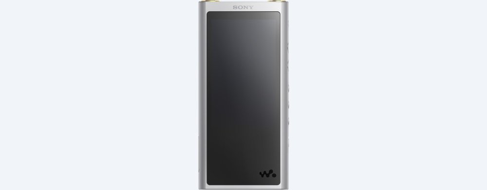 ZX300 Walkman(R) ZX Series