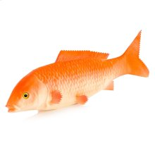 Soft Red Snapper Fish