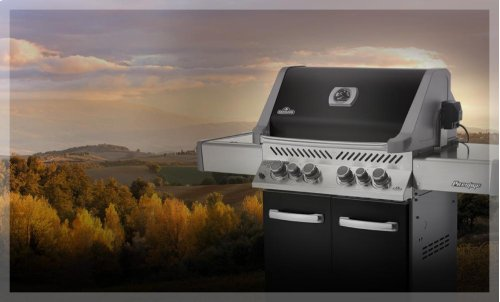 Prestige® 500 with Infrared Side and Rear Burners in Black