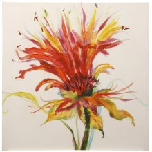 Vivid Perennial Stretched Canvas