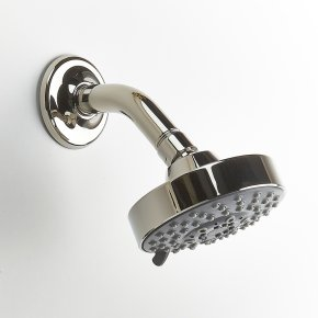Shower Head Taos Series 17 Polished Nickel