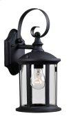 Leo - 1 Light Lantern