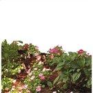 18V Garden Cultivator Product Image