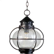 Portsmouth 1-Light Outdoor Hanging Lantern