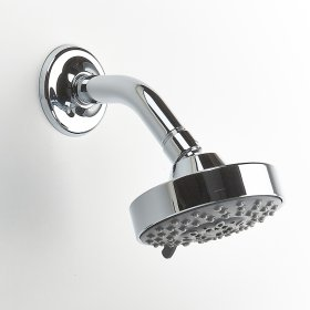 Polished Chrome River (Series 17) Shower Head