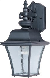 Senator 1-Light Outdoor Wall Lantern